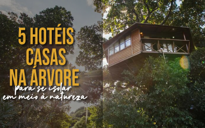 5 Hotéis Casas na Árvore