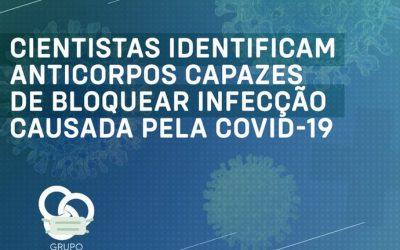 Cientistas identificam anticorpos capazes de bloquear infecção da Covid-19 | Nota