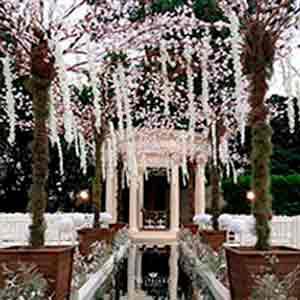 Árvore francesa branca-locação de peças decorativas