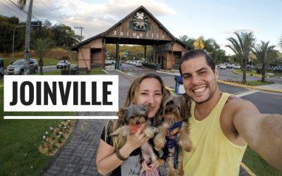 Viagem Petfriendly: Joinville/SC