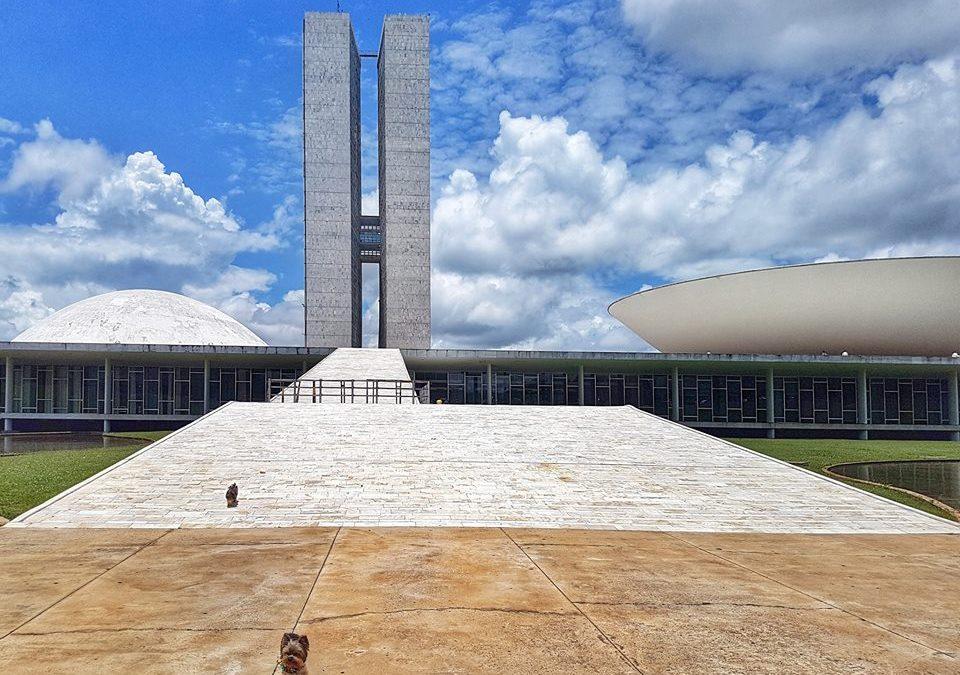Destino: Brasília! E a primeira viagem de avião!