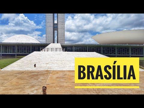 Viagem Petfriendly: Brasília/DF