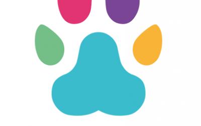 Aplicativo ajuda a encontrar pets que fugiram de casa