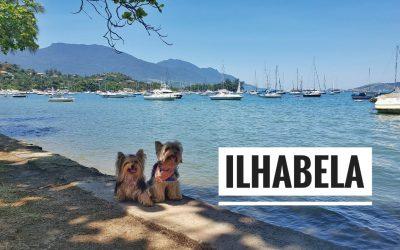 Viagem Petfriendly: Ilhabela/SP