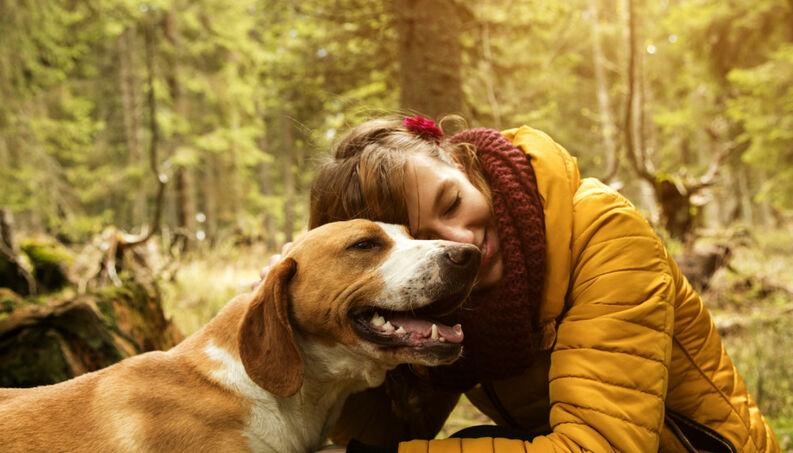 Cachorros têm um nível de sensibilidade comparável ao de uma criança humana